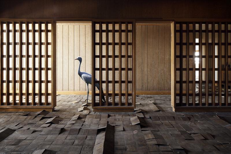 Henk VAN RENSBERGEN - Photography - Haruki