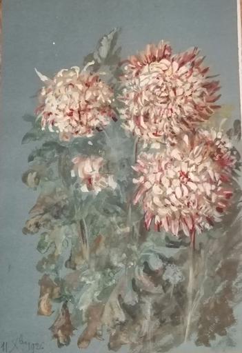 Alfred KELLER - Dibujo Acuarela - Chrysanthèmes - Botanique -