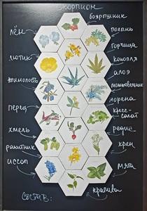 Elena KOVYLINA - Gemälde - Audio-Visual Pharmacy. Scorpio