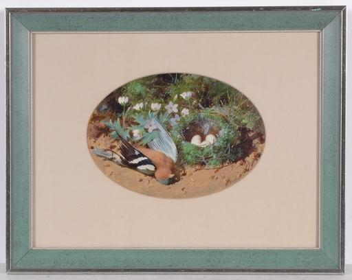 """William CRUICKSHANK - Peinture - """"Fallen Chaffinch and Nest"""", Second Half of the 19th Century"""