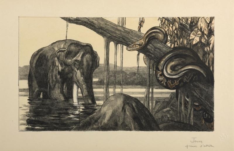 Paul JOUVE - Grabado - Eléphant et python