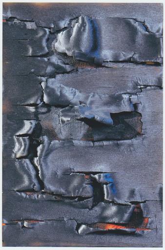 Bernard AUBERTIN - Pintura - Bois brulé