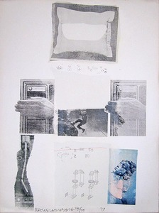 Robert RAUSCHENBERG, Two Reasons Birds Sing