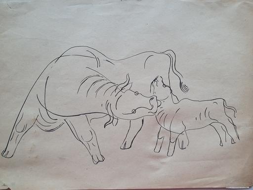 Béla KADAR - Disegno Acquarello - Cattle