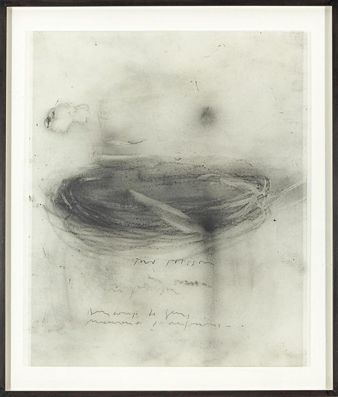 Luca CACCIONI - Drawing-Watercolor - Sin Título