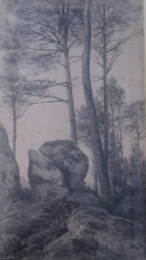 Auguste ALLONGÉ - Dibujo Acuarela - COIN DE FORET