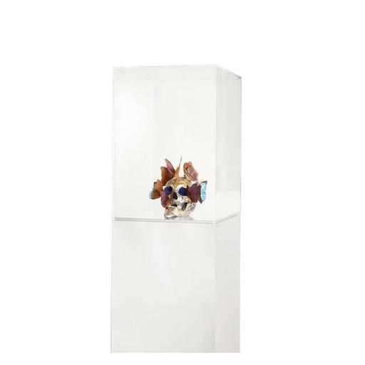 Philippe PASQUA - Escultura - Vanité aux papillons