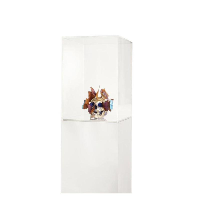 Philippe PASQUA - Sculpture-Volume - Vanité aux papillons