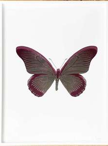 Damien HIRST - Stampa Multiplo - The Souls IV