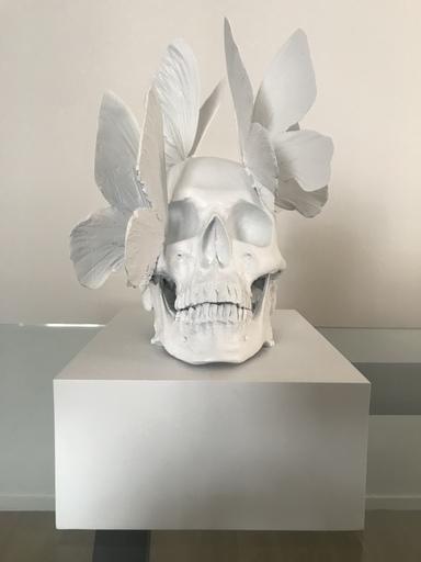 Philippe PASQUA - Sculpture-Volume - Vanités aux papillons