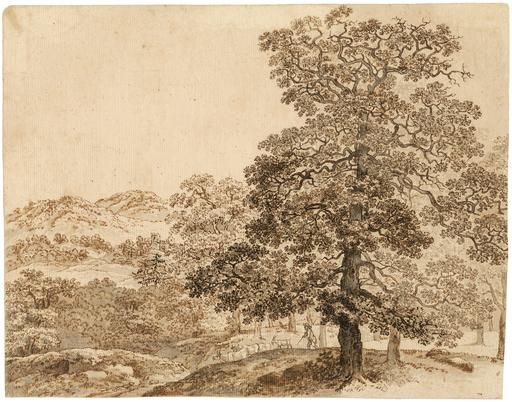 Johann Christian REINHART - Disegno Acquarello - Bewaldete hügelige Landschaft mit einem Hirten.