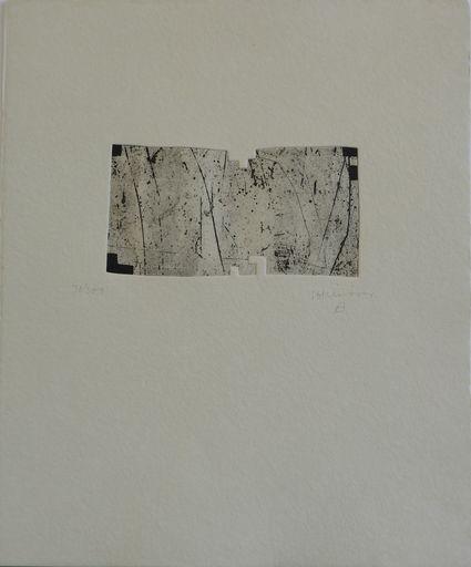 爱德华多•奇利达 - 版画 -  Clara Janés: la indetenible quietud I