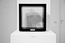 Max COPPETA - Sculpture-Volume - Medium Drop I