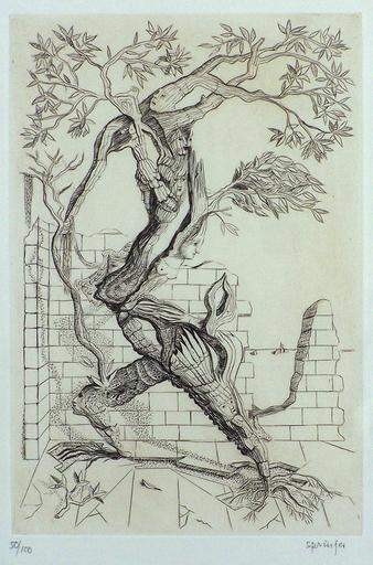 Ferdinand SPRINGER - 版画 - Surreal Tree