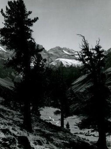 Emil MEERKÄMPER - Photography - Die oberer Kämper des Bergwaldes. Im Tal das Setigdörfli bei