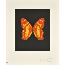 Damien HIRST (1965) - Emerge (Butterfly)
