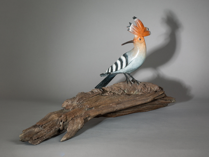 Mark DEDRIE - Sculpture-Volume - Huppe Fasciée