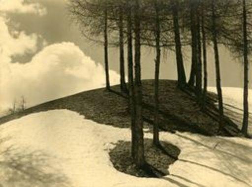 Albert STEINER - Fotografie - Der letzte Schnee
