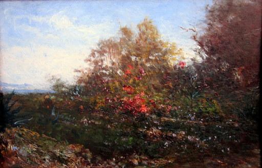 Félix ZIEM - Peinture - Le jardin de l'artiste à Nice