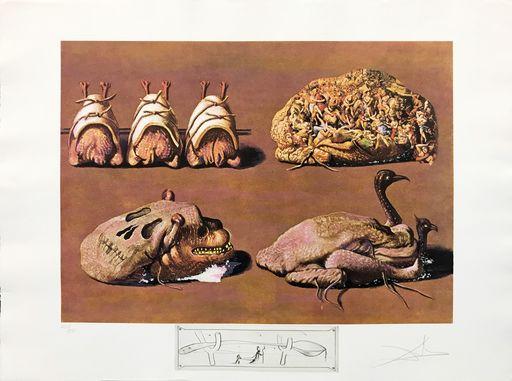 萨尔瓦多·达利 - 版画 - Les Caprices Pinces Princiers