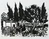 Jacques HALLEZ - Grabado - Les cyprès à Saint Rémy