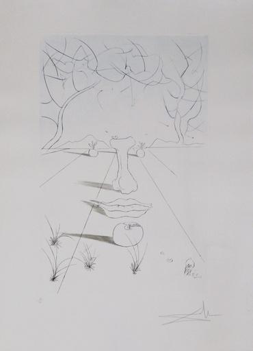 Salvador DALI - Druckgrafik-Multiple - Aurelia Visage Surrealiste