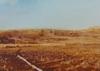 Gerhard RICHTER - Estampe-Multiple - Landscape I | Landschaft I