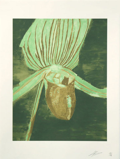 Luc TUYMANS - Estampe-Multiple - Orchid