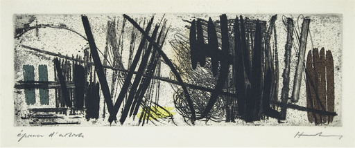 Hans HARTUNG - Estampe-Multiple - G3