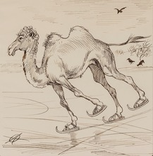 Adolf OBERLÄNDER - Drawing-Watercolor - The Camel