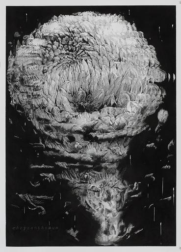 Alain HUCK - Zeichnung Aquarell - Chrysanthemum II