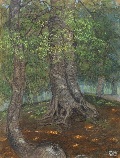 Otto DIX - Disegno Acquarello - Forest Clearing | Waldlichtung
