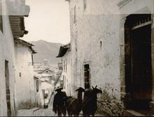 Martín CHAMBI - Fotografia - (framer with sheep in village)