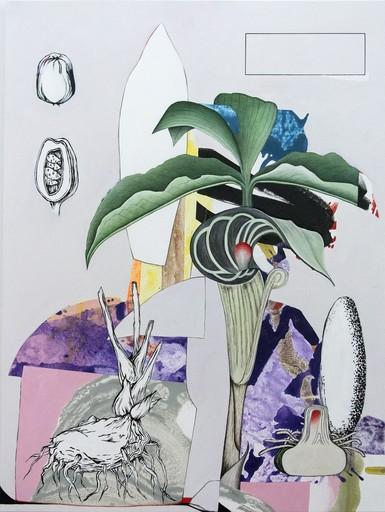 Fiona ACKERMAN - Painting - Naturalis Malum