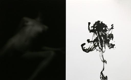 Edouard DE PAZZI - 照片 - Eros and Thanatos - Diptych 07