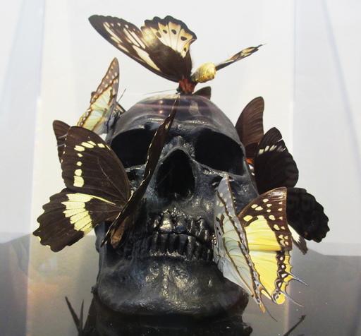 Philippe PASQUA - Skulptur Volumen - Vanité aux papillons