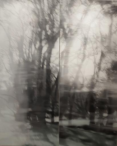 Jean-Marc AMIGUES - Pittura - Sous bois à Espierba 3