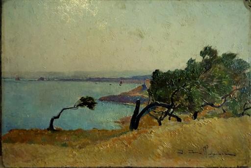 David DELLEPIANE - Pittura - Coup de vent sur les pins, environs de Toulon