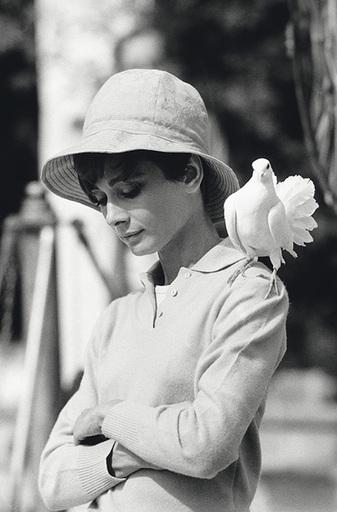 Terry O'NEILL - Photography - Audrey Hepburn, St Tropez