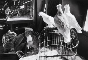 Henri CARTIER-BRESSON - Photography - Henri Matisse