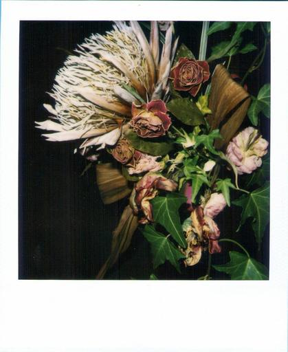 Nobuyoshi ARAKI - Fotografia - Flower