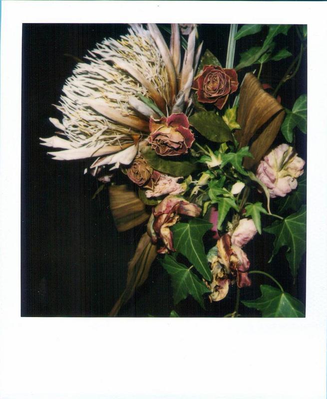 Nobuyoshi ARAKI - Photography - Flower