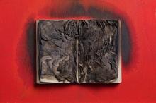Bernard AUBERTIN - Peinture - LIVRE BRÛLÉ