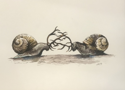 Damir MURATOV - Drawing-Watercolor -  Snail war