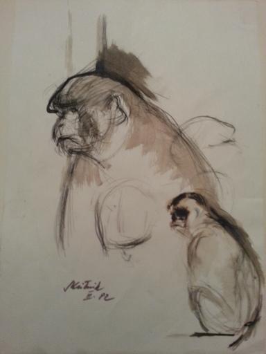 Oswin SKUTNIK - 水彩作品 - Etude de singe