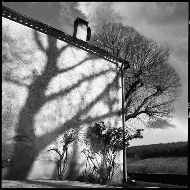 ELIZERMAN - Photography - Shadow