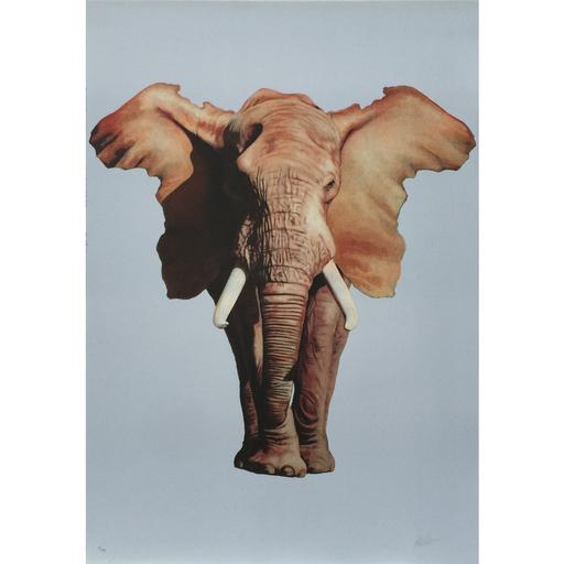 羅恩‧英格利什 - 版画 - African Elephant