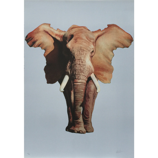 Ron ENGLISH - Stampa-Multiplo - African Elephant
