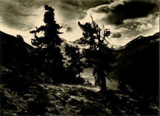 Emil MEERKÄMPER - Photography - (Mystische Landschaft)