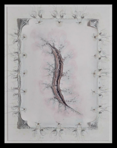 Cathy DE MONCHAUX - Dessin-Aquarelle - Wound Drawing # 12 (open scar rectangle)